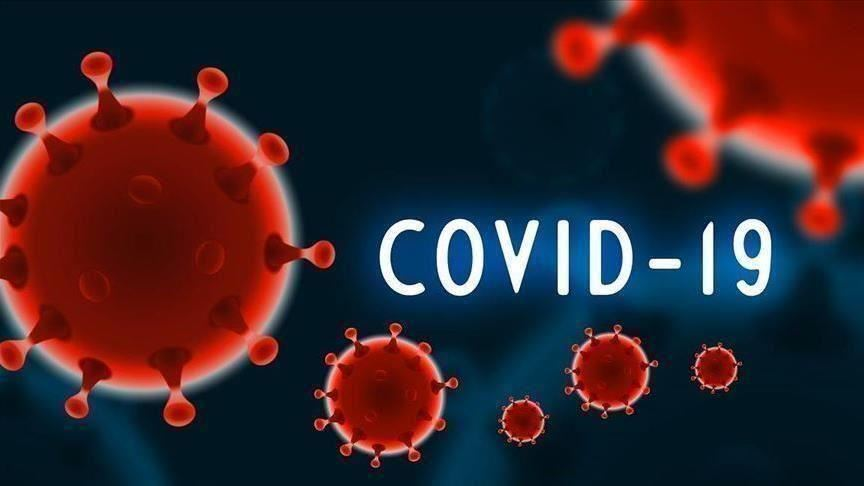 Coronavirus digest: Infection gives immunity for several months