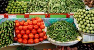 الزراعة: مقبلون على وفرة بالمنتجات ما سيخفض الأس