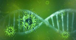 درجة الحرارة العالية تقضي على فيروس كورونا
