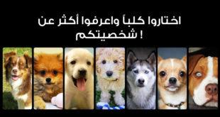الكلب الذي تختارونه يمكن أن يخبر الكثير عنكم