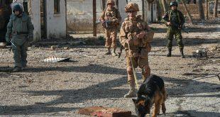 الجيش السوري يطهر أراض بمساحة 1.5 هكتار من الألغام