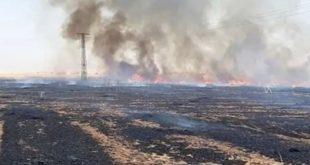 الحسكة: النار تلتهم محاصيل تل تمر.. فصائل تركيا تفتعل الحرائق