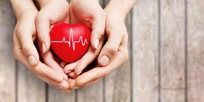 هل تعرفون ما الفرق بين قلب الرجل وقلب المرأة؟