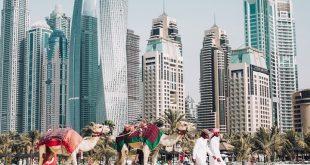 استطلاع في دبي يتوقع إغلاق 70 بالمئة من الشركات في 6 أشهر