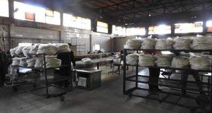 محافظ حماة يعاقب العاملين في مالية السقيلبية ورئيس وردية مخبزها الآلي