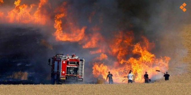 شهادات سكان الحسكة: واشنطن تحرق حقول القمح