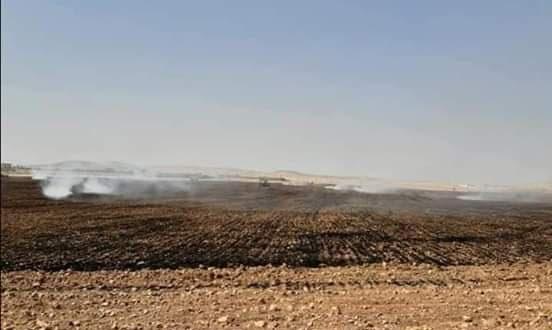 9 حرائق في سلمية وريفها