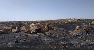 النار تلتهم 3 آلاف دونم من القمح والشعير والزيتون بالربيعة في مصياف