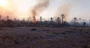 إخماد حريق التهم ٢٠٠ هكتار من بساتين تدمر