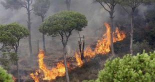 إخماد 15 حريقاً في ريف حمص