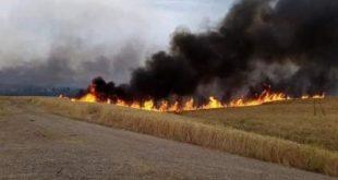 حريق ضخم في محيط معمل الأعلاف