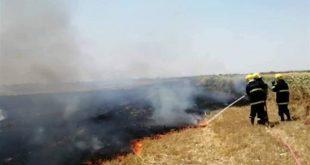 إخماد حريق طال عشرات الدونمات المزروعة بالقمح بالغوطة الشرقية