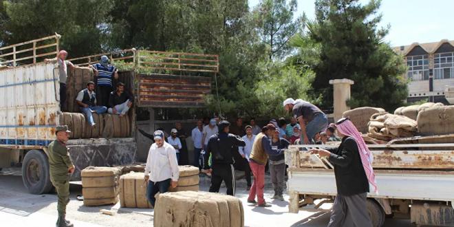 Screenshot 2020 06 14 خبز السوريين في خطر مسلحون موالون للجيش الأمريكي ينفذون حصتهم من قيصر