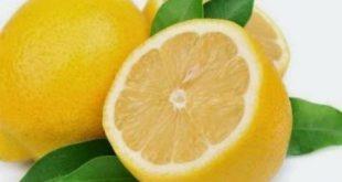 الليمون الحامض بـ4000 ليرة.. كشتو