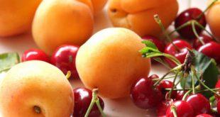 سماسرة الفواكه يشترون الكرز والمشمش