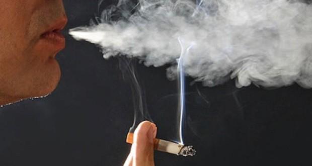 مفاجآت سارّة لمزارعي التبغ وللمدخنين