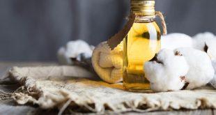 تعثر استجرار السورية للتجارة لزيت العاصي