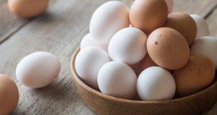 لا تتناول البيض يوميا لهذا السبب