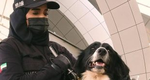 الإمارات تنجح في كشف كورونا باستخدام الكلاب البوليسية