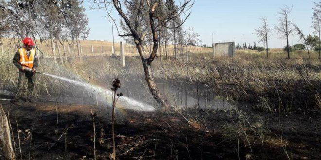 حريق كبير على امتداد 40 دونم أشجار بريف حمص