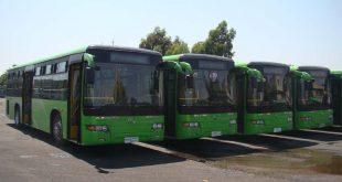 مدير شركة النقل الداخلي في اللاذقية: رحلات بأسعار رمزية إلى أماكن الاصطياف