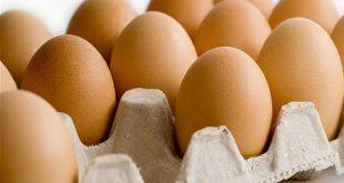 طبق البيض يرتفع 500 ليرة دفعة واحدة في الأسواق السورية