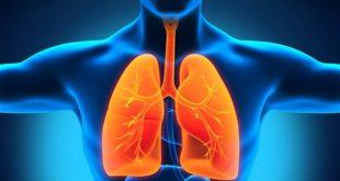 تعرف على أفضل طريقة لإزالة السموم من الرئة خلال يوم واحد فقط