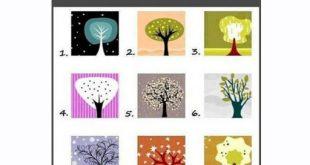 اكتشفوا شخصيتكم مع الشجرة المفضلة لديكم