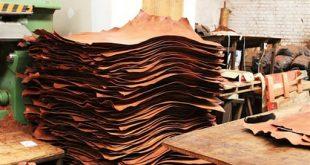 سفير الصومال يدعو لتنشيط الصادرات الجلدية السورية