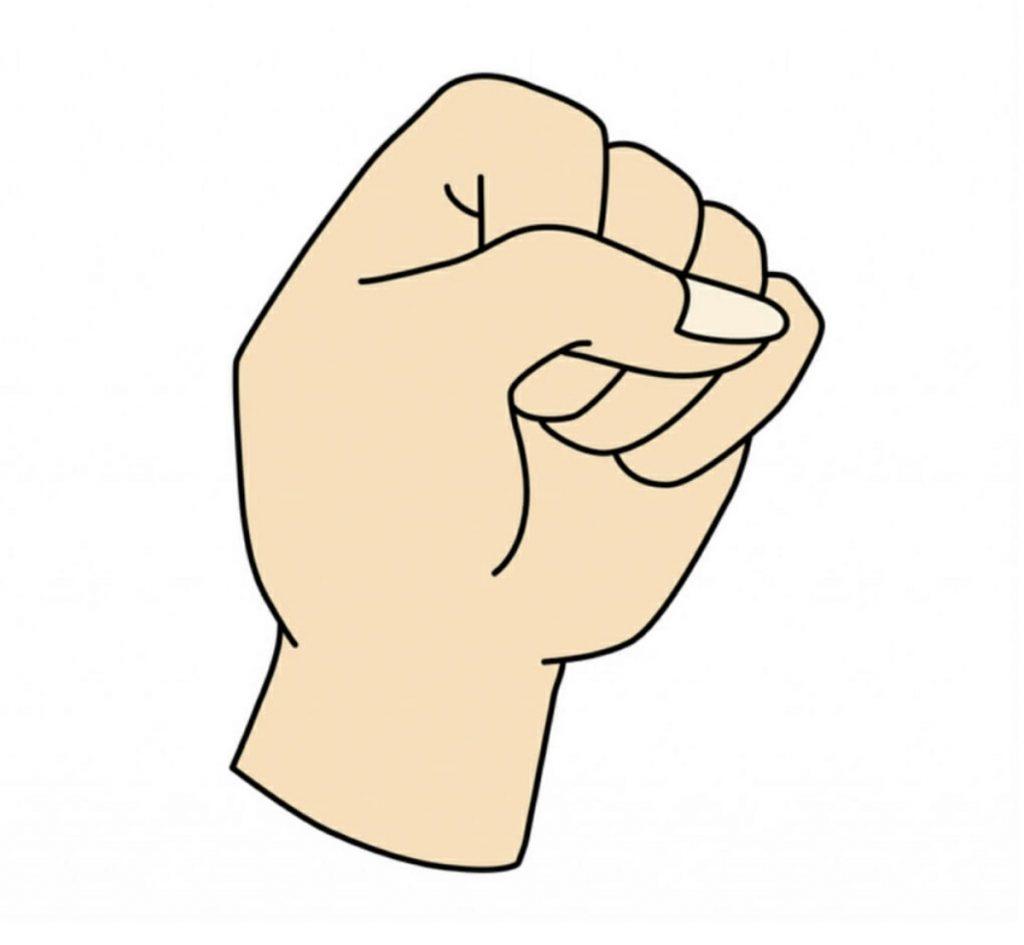 قبضة اليد 2 1024x945 1