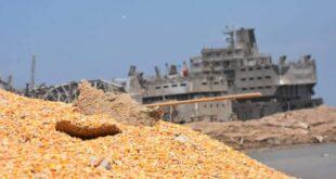 ما هو تأثير انفجار مرفأ بيروت على استيراد القمح في سوريا؟