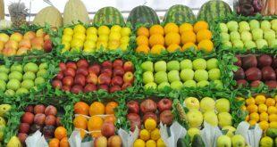 انخفض تصدير الخضر والفواكه