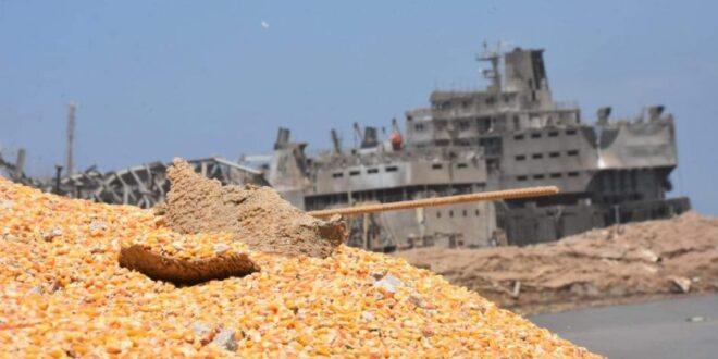 لا تأثير لانفجار مرفأ بيروت على استيراد القمح في سورية
