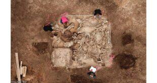 اكتشاف قبر غامض عمره 1500 عام في ألمانيا.. شاهد!