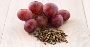 فوائد بذور العنب لصحة الجسم..سيذهلك التعرف عليها