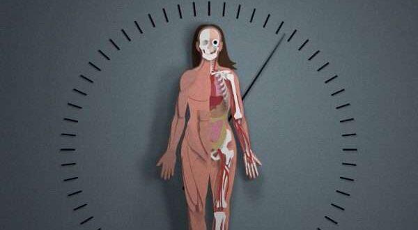 حساب العمر الجسدي.. كم يبلغ جسدك من العمر؟!
