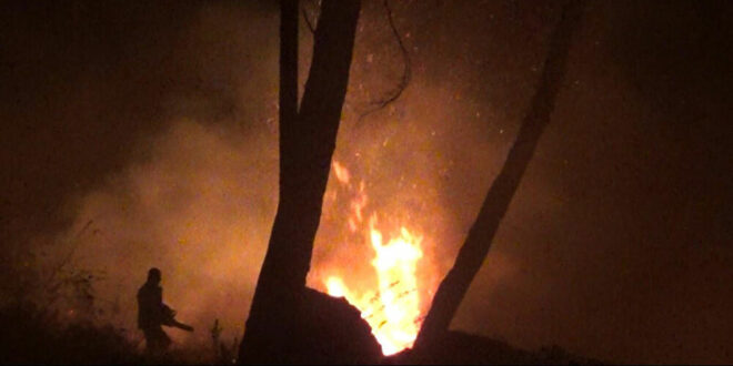 مع درجات حرارة حارقة.. حرائق كبيرة تشتعل في عدة مناطق سورية.. فيديو