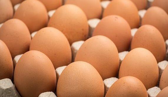 """ارتفاع جنوني في أسعار البيض .. والدواجن تتحدث عن أسباب """"موضوعية""""!!"""