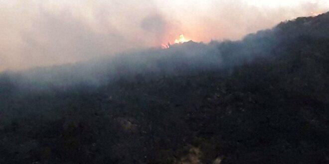 85 بالمئة نسبة السيطرة على حرائق ريف مصياف.. وفرق الإطفاء تتعامل مع حريق الغاب الحدودي مع اللاذقية