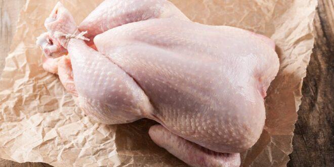 تخزين الدجاج .. الطازج قد يصبح سامًا.