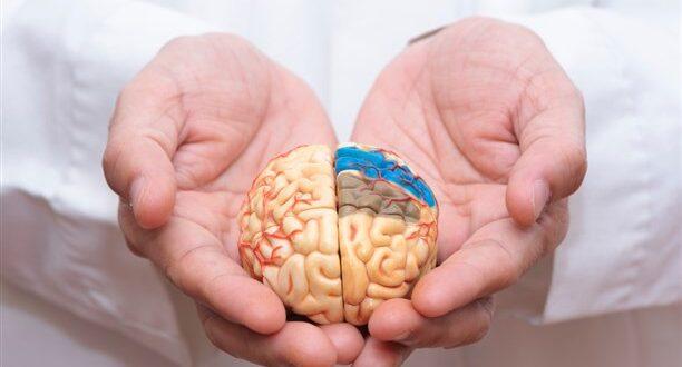 ما الذي يسبّب السكتة الدماغية المفاجئة؟