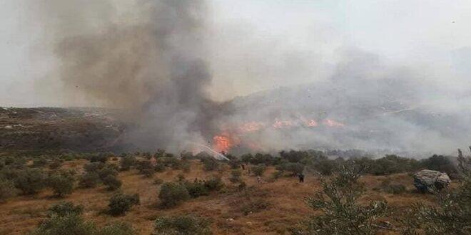 انضمام طائرة إيرانية للحوامات السورية في جهود إطفاء الحرائق