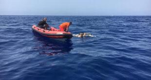 العثور على جثمان سوري جديد من ضحايا قارب الموت إلى قبرص