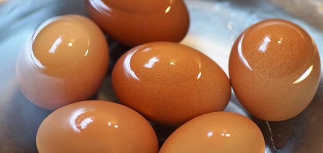 بيض غامض يثير حيرة المزارعين.. شاهد!