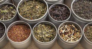 علاج دهون الكبد الزائدة بالأعشاب الطبيعية