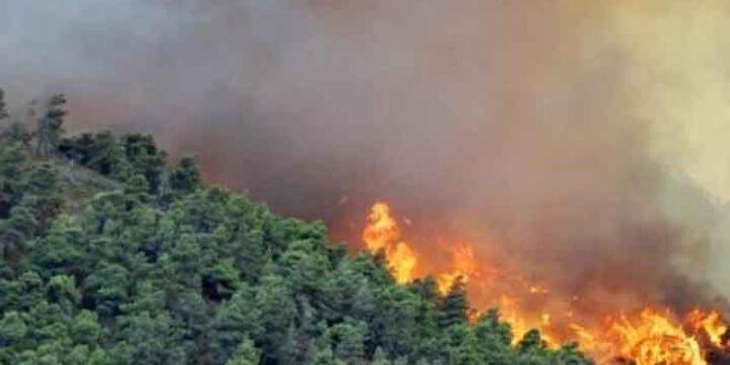 انضمام منطقتي بللوران والبسيط و وادي قنديل لسلسلة الحرائق الضخمة منذ الصباح