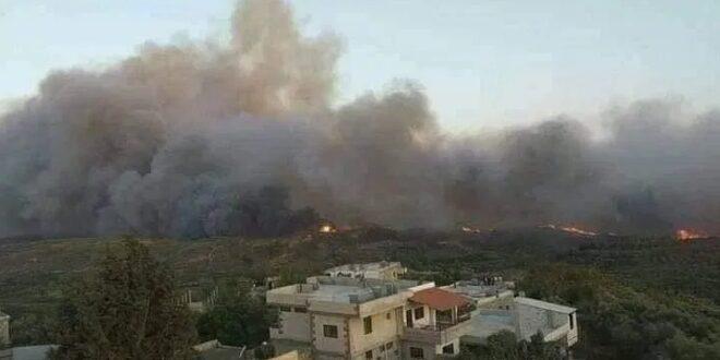 أكبرها في منطقة مشتى الحلو .. اندلاع 55 حريقاً في طرطوس