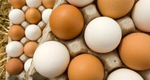 أسرار بسيطة لطهي بيض مقلي مثالي