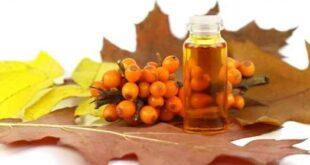 فوائد عسل السدر و أهم إستخداماته