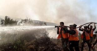 وزير الزراعة السوري: الأولوية بعد إخماد الحرائق هي حصر الأضرار وتعويض المتضررين
